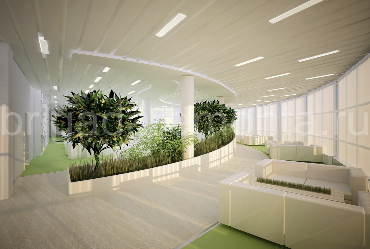 Визуализация офиса,деревья в офисе,потолок в офисе,подсветка,диван,колонны